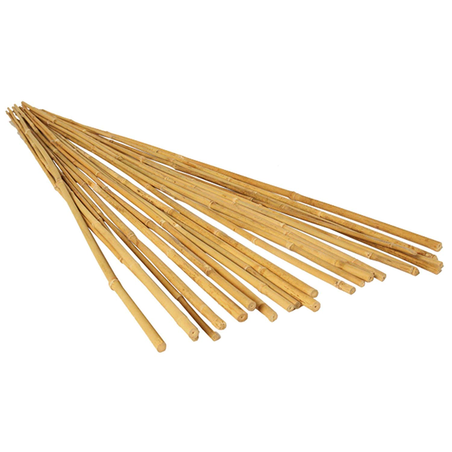 Bamboo Stake 7 FT. (10PCS/BDL)