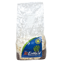 THE XL EXHALE HOMEGROWN CO2 BAG (XL)